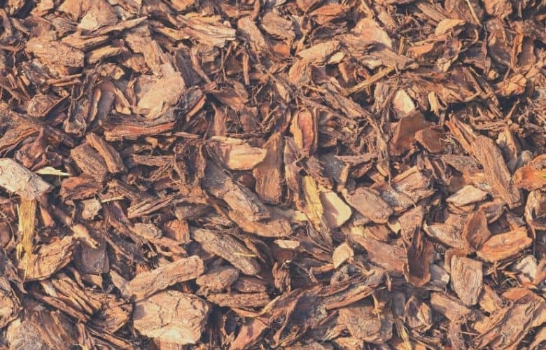 best mulch for dogs