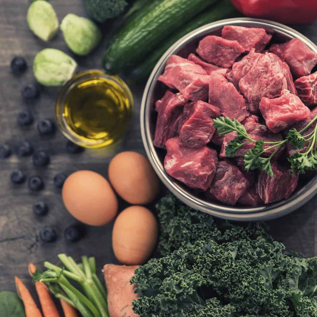 Best Dog Food By Ingredients