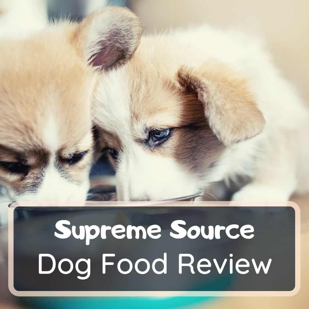 supreme source dog food review