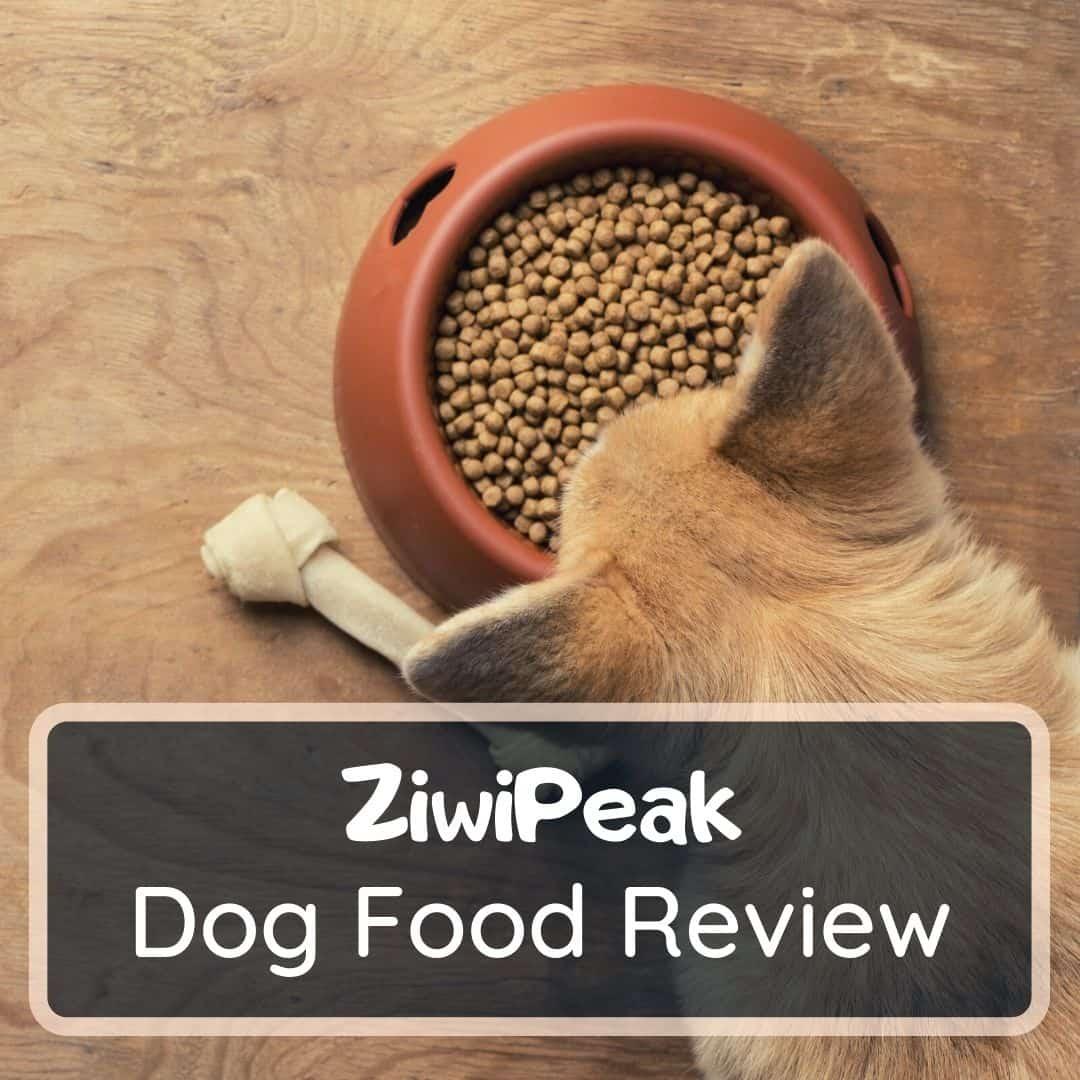 ziwi peak dog food reviews