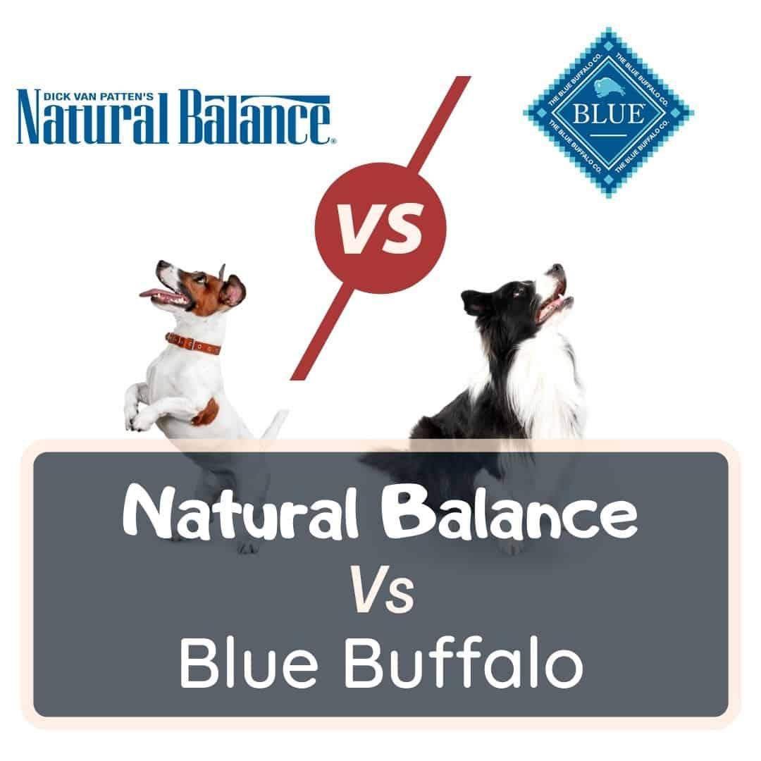 natural balance vs blue buffalo