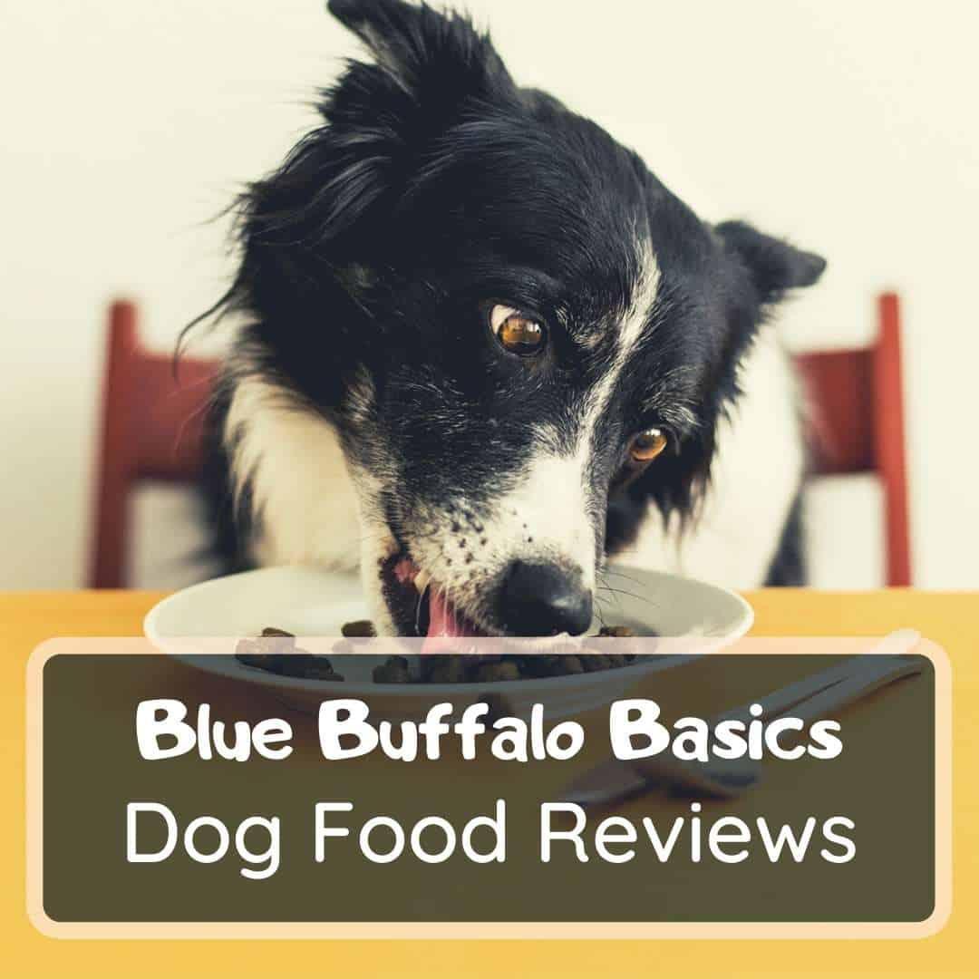 Blue Basics Dog Food Review