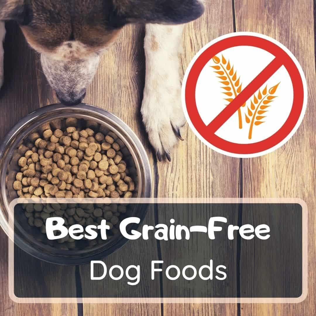 Best grain-free dog food